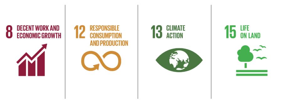 SDG 8 12 13 15